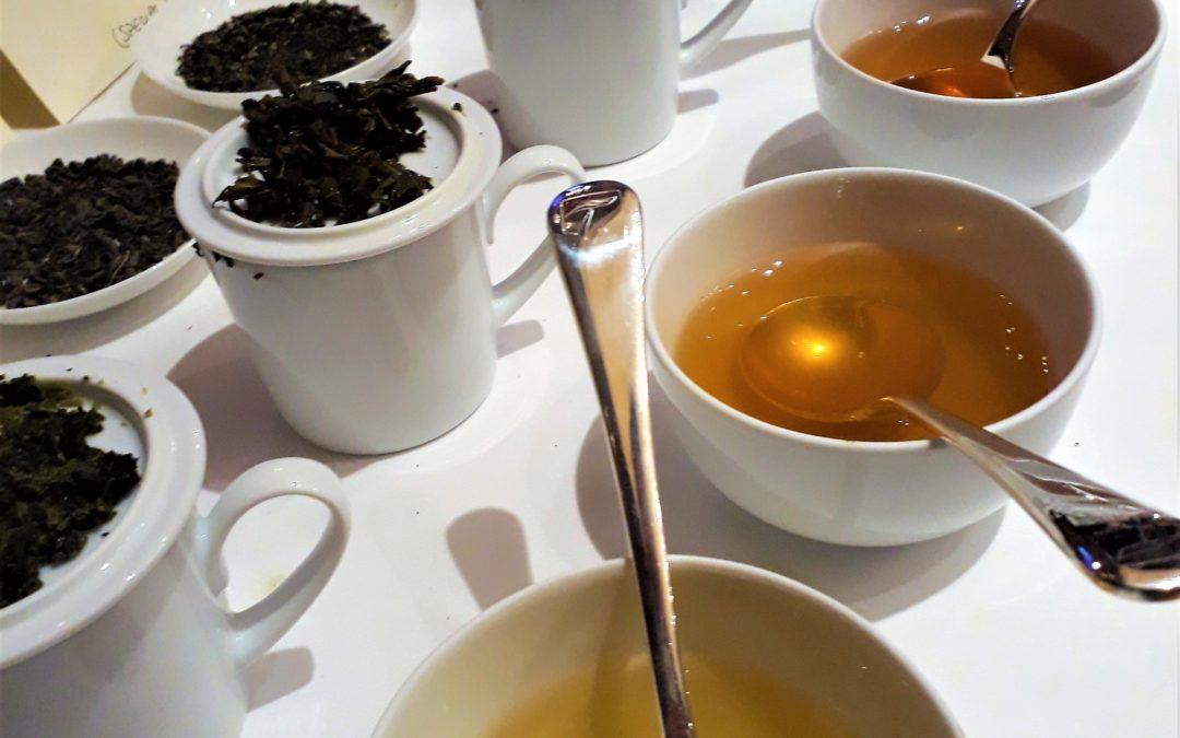 Tea Tasting!