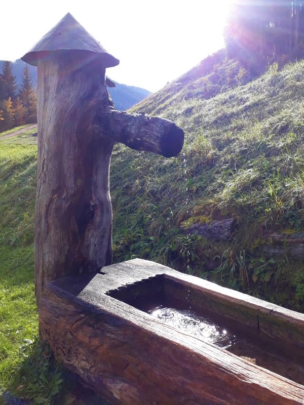 brunnen - BERGDORF PRECHTLGUT: Chaletzauber in Wagrain
