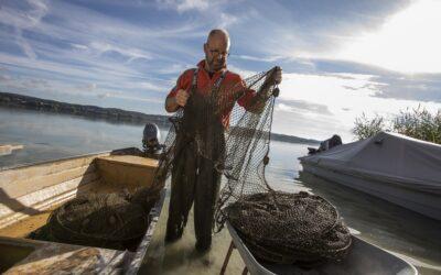 REGIO 2021 09 Fischer Stefan Riebel von der Insel Reichenau ordnet seine Netze 2000x1330pxi Nachweis REGIO Ulrike Klumpp 400x250 - News